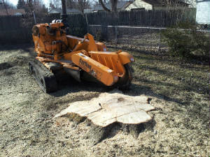 Residential Stump Grinding